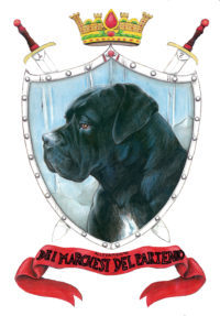 Allevamento cane Corso